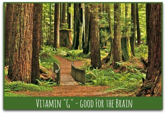 vitamin green - good for the brain